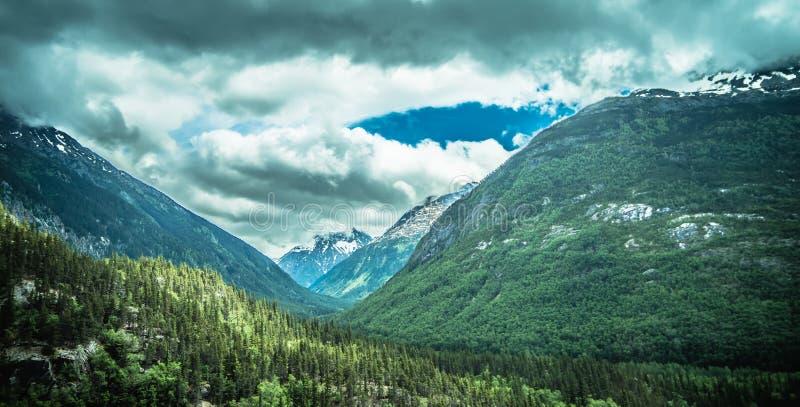 mooie rotsachtige bergen in juni in whitepass dichtbij skagway helaas stock foto's