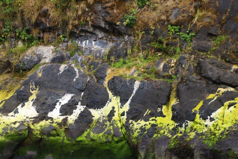 Mooie rotsachtige kust van de Vreedzame Oceaan, achtergrond royalty-vrije stock afbeelding