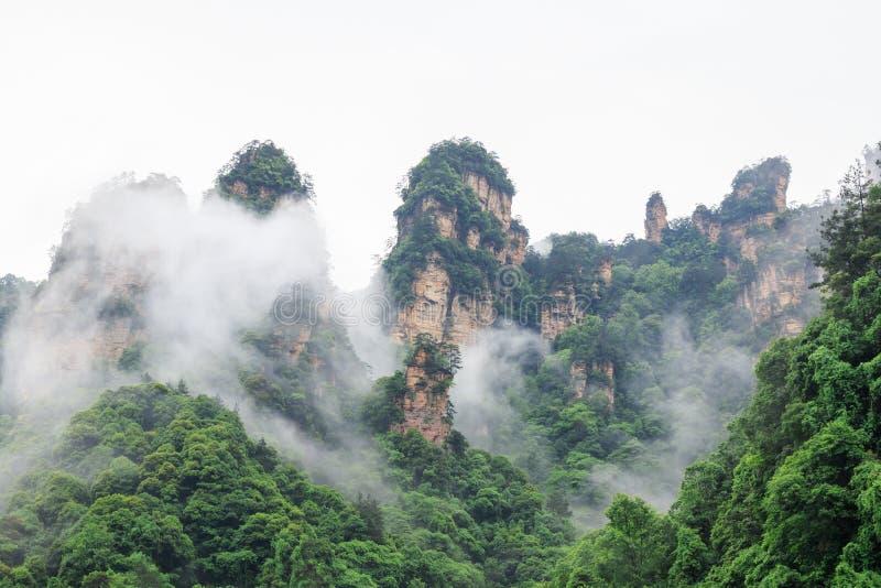 Mooie Rotsbergen met Groene die Bomen door Witte Mistwolken worden omringd Het mooie Landschap van de Berg royalty-vrije stock afbeeldingen
