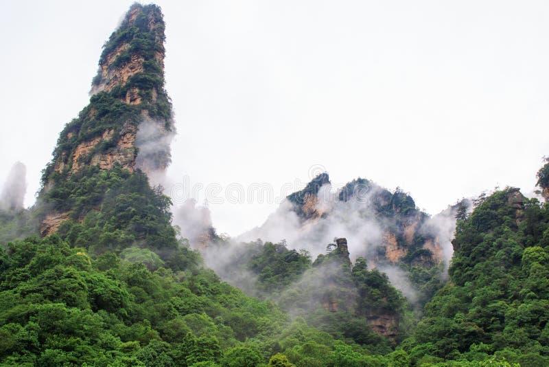 Mooie Rotsbergen met Groene die Bomen door Witte Mistwolken worden omringd Het mooie Landschap van de Berg royalty-vrije stock fotografie