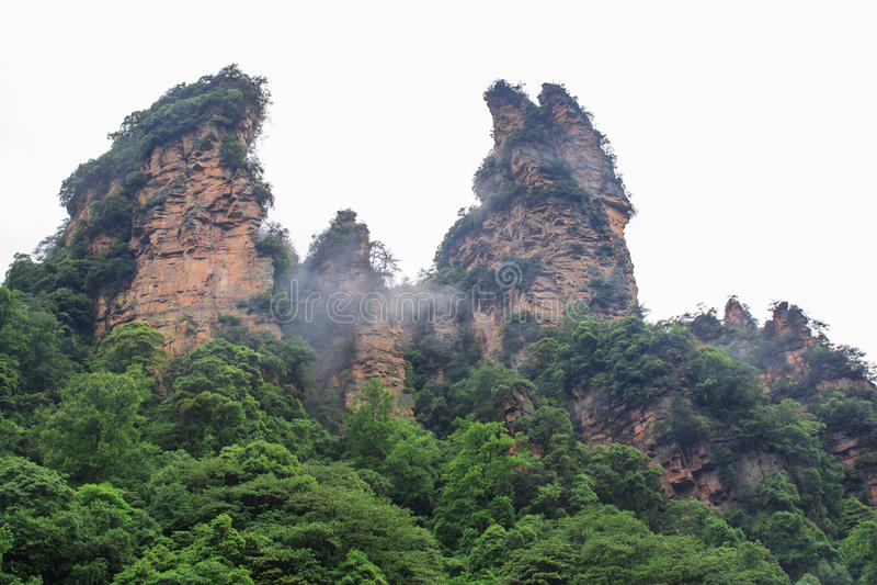 Mooie Rotsbergen met Groene die Bomen door Witte Mistwolken worden omringd Het mooie Landschap van de Berg stock afbeeldingen
