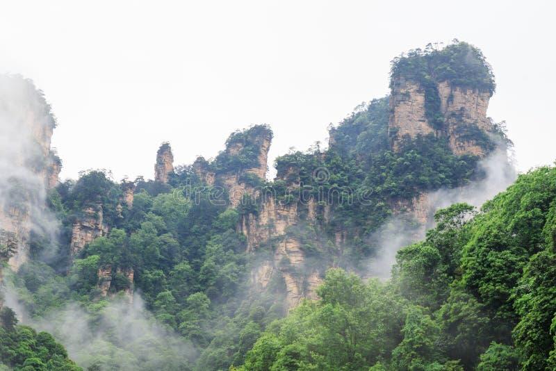Mooie Rotsbergen met Groene die Bomen door Witte Mistwolken worden omringd Het mooie Landschap van de Berg stock foto