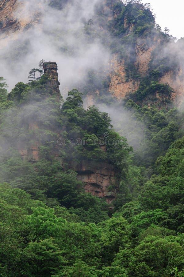 Mooie Rotsbergen met Groene die Bomen door Witte Mistwolken worden omringd Het mooie Landschap van de Berg stock afbeelding