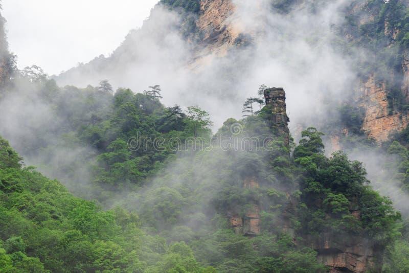 Mooie Rotsbergen met Groene die Bomen door Witte Mistwolken worden omringd Het mooie Landschap van de Berg royalty-vrije stock foto's