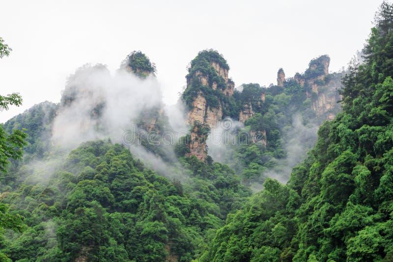 Mooie Rotsbergen met Groene die Bomen door Witte Mistwolken worden omringd Het mooie Landschap van de Berg stock fotografie