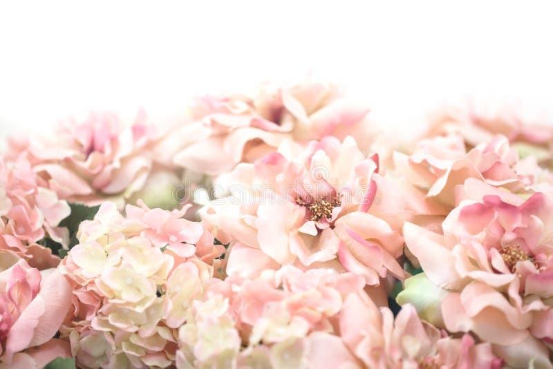 Mooie roze bloemachtergrond royalty-vrije stock foto