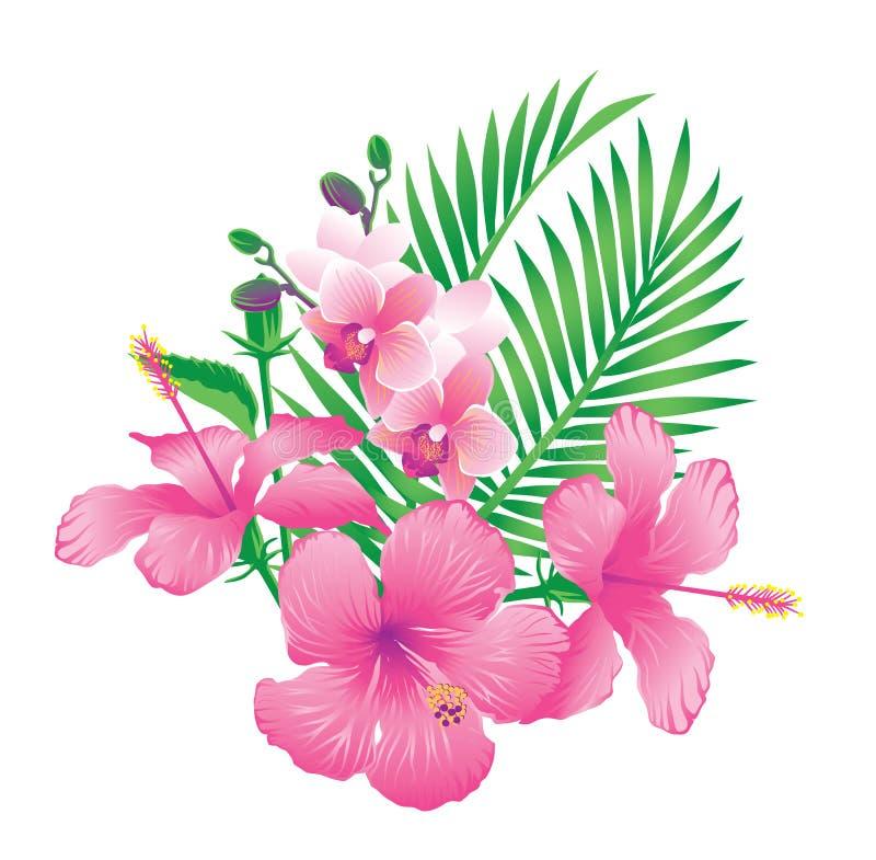 Mooie roze hibiscus en orchideebloemen vector illustratie