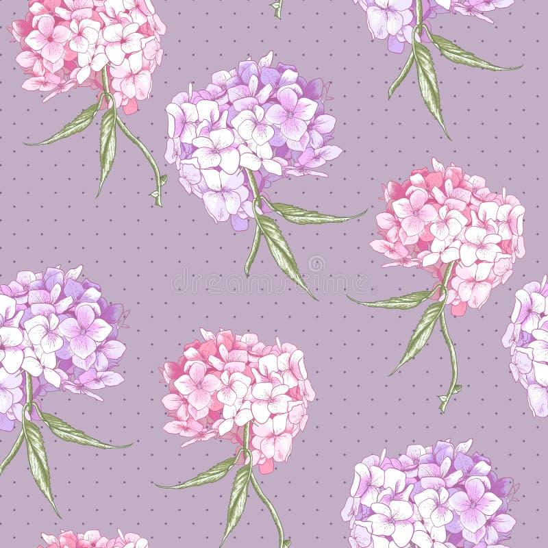 Mooie Roze Hydrangea hortensia Naadloze Achtergrond royalty-vrije illustratie