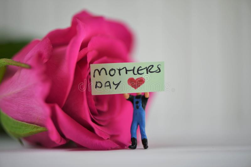 Mooie roze nam bloem met miniatuurteken en woorden voor moedersdag toe royalty-vrije stock foto