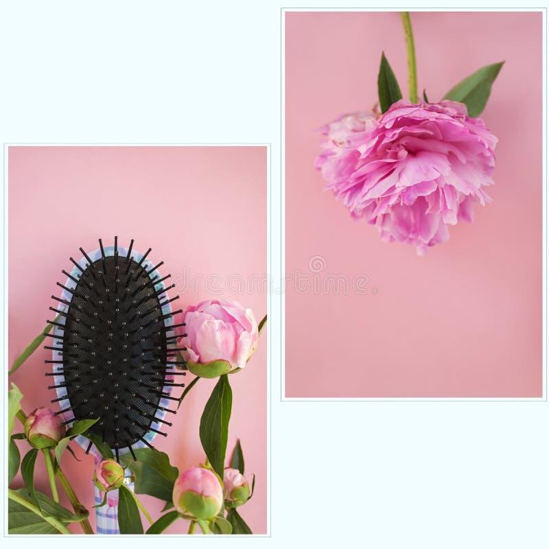 Mooie roze pioenbloemen en haircomb op een roze achtergrond Fotoreeks stock fotografie