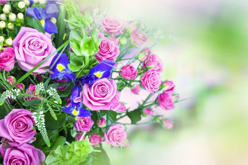 Mooie roze rozen op vage achtergrond royalty-vrije stock fotografie
