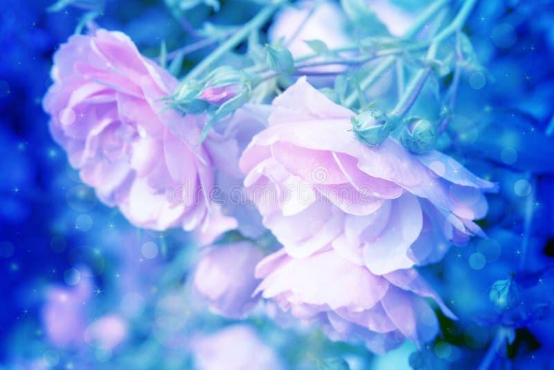 Mooie rozen artistieke dromerige achtergrond met bokehlichten royalty-vrije illustratie