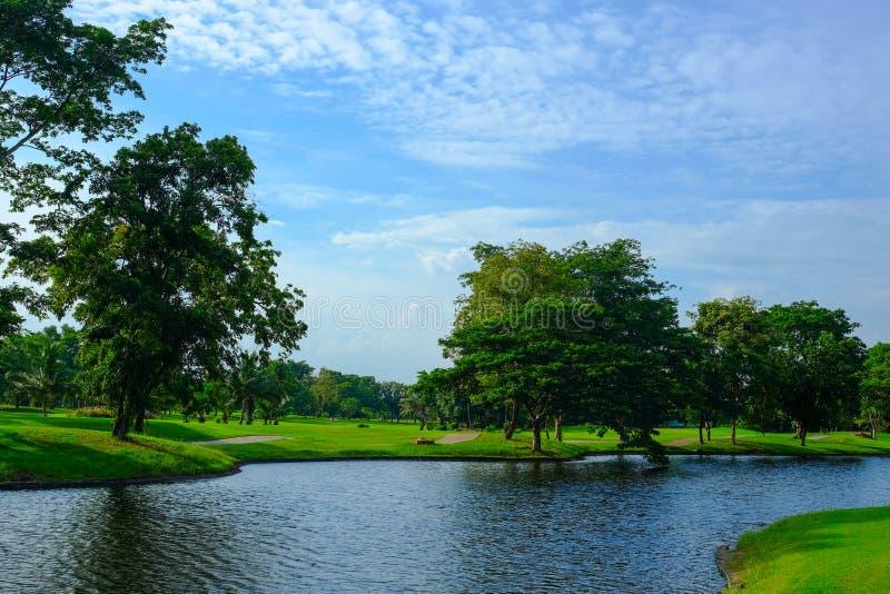 Mooie scène in golfcursus stock foto