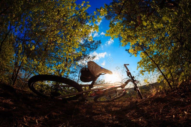 Mooie scène van fiets op zonsondergang royalty-vrije stock afbeelding