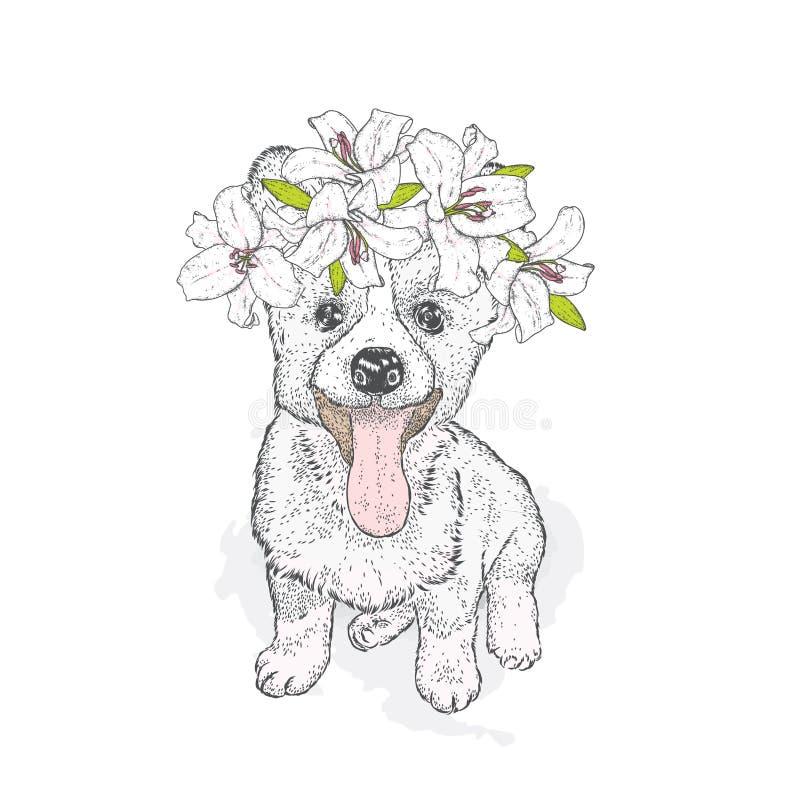 Mooie Schor in een kroon van lelies Mooi puppy in een bloemkroon Rashond Vector illustratie Een leuk puppy stock illustratie