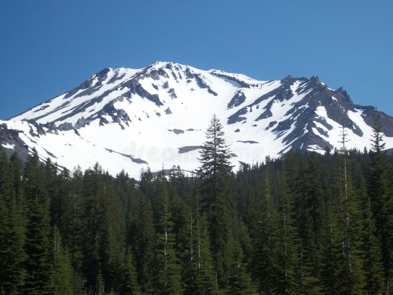 Mooie sneeuw behandelde Berg stock fotografie