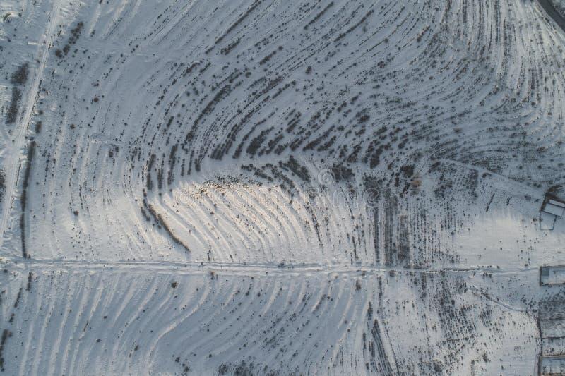 Mooie sneeuwheuvels royalty-vrije stock afbeeldingen