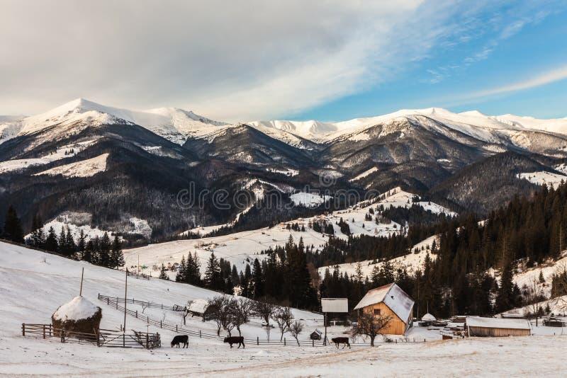 Mooie snow-capped bergen royalty-vrije stock foto