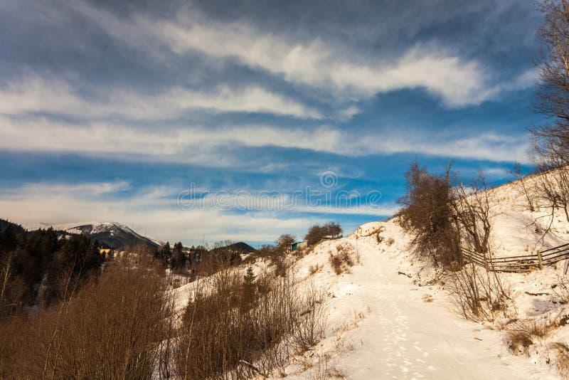 Mooie snow-capped bergen royalty-vrije stock fotografie