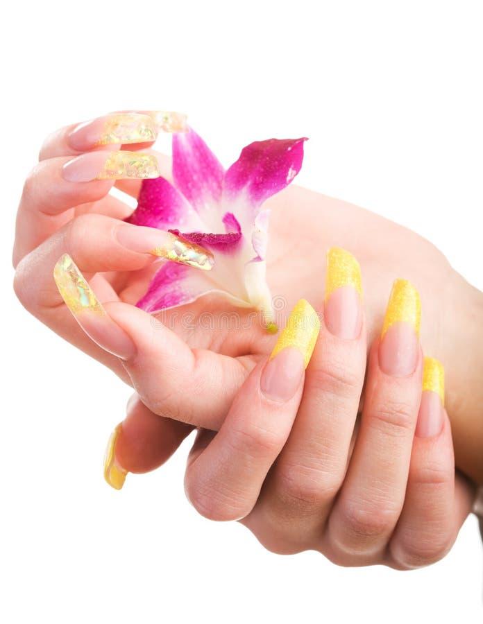 Mooie spijkers en vingers stock afbeelding