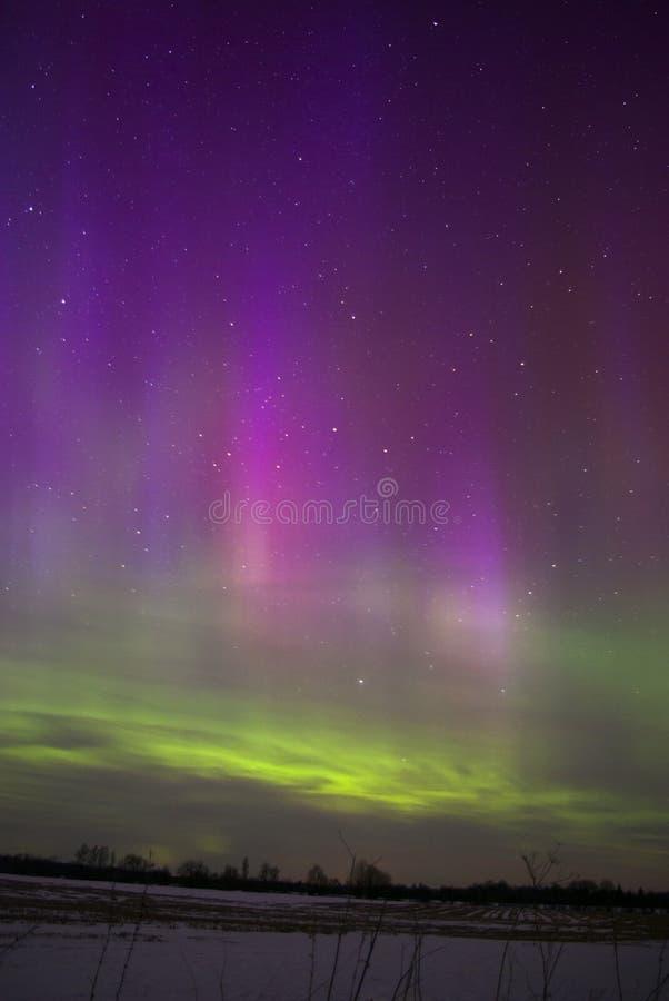 Mooie Sterke Noordelijke Lichten in Estland stock afbeelding