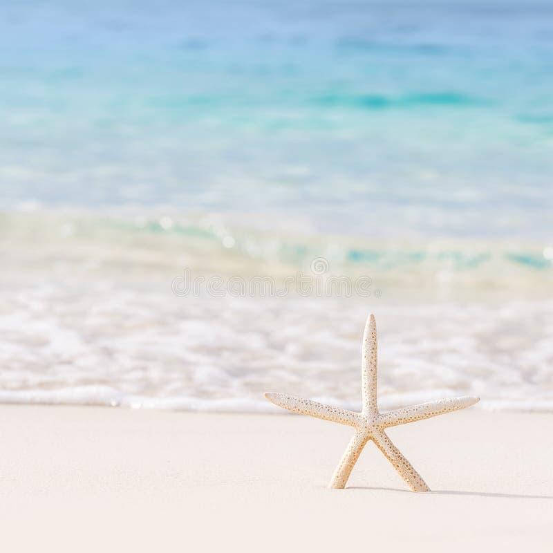 Mooie strandachtergrond royalty-vrije stock foto's