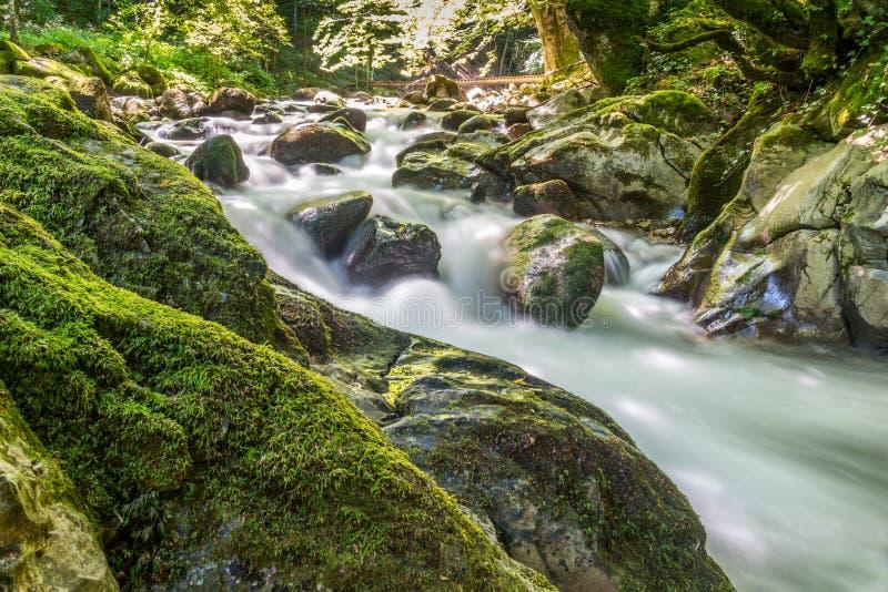 Mooie stroomcascade over vrij groene mos behandelde stenen stock fotografie
