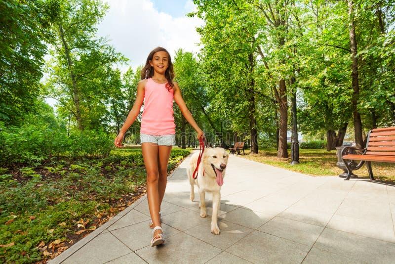 Mooie tiener die haar honden lopen stock foto's