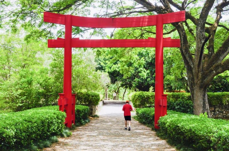 Mooie toriipoort in Japanse tuin aanbesteding met green van aard royalty-vrije stock afbeelding