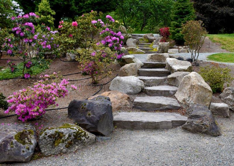 Mooie trap in de tuin stock afbeelding