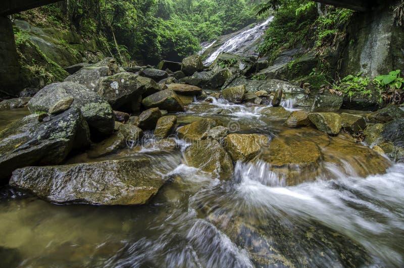 Mooie tropische die rivier door groene bos duidelijke water en golven wordt omringd stock afbeeldingen