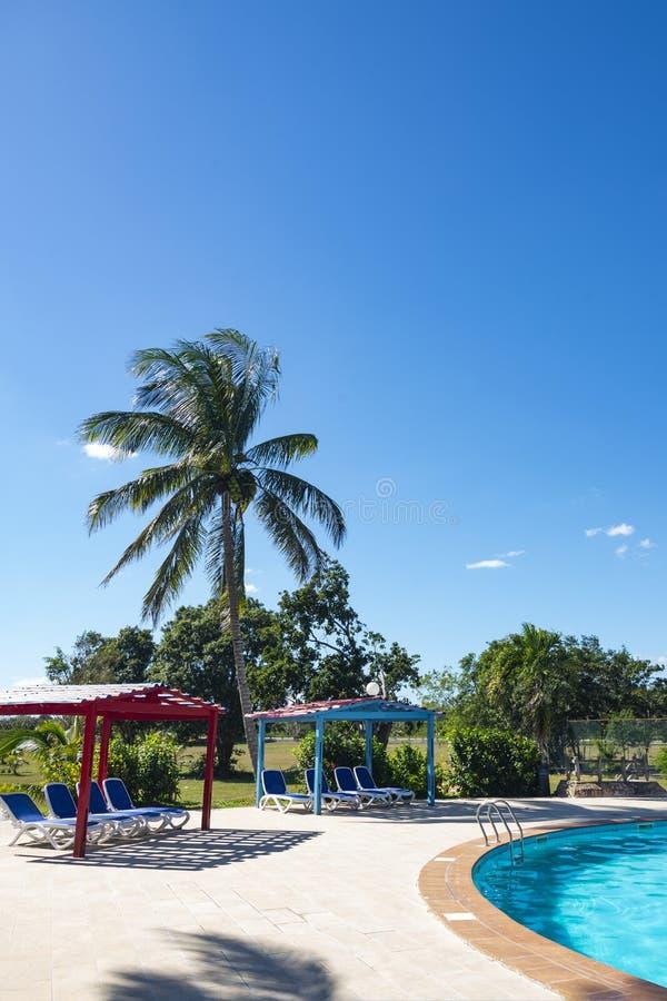 Mooie tropische toevlucht met zwembad, zon-lanterfanters en palmen tijdens een warme zonnige dag, vakanties in Cuba royalty-vrije stock fotografie