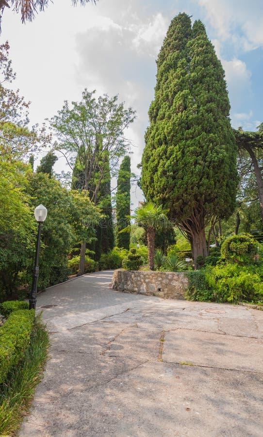 Mooie tuin met hagen stock afbeelding