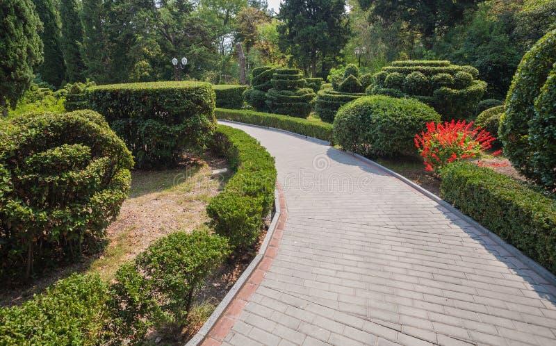 Mooie tuin met hagen royalty-vrije stock afbeeldingen