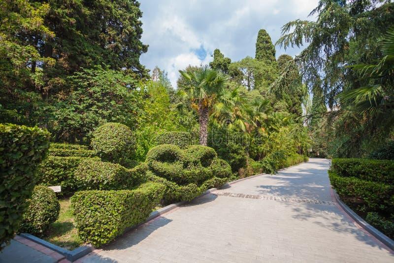 Mooie tuin met hagen royalty-vrije stock fotografie