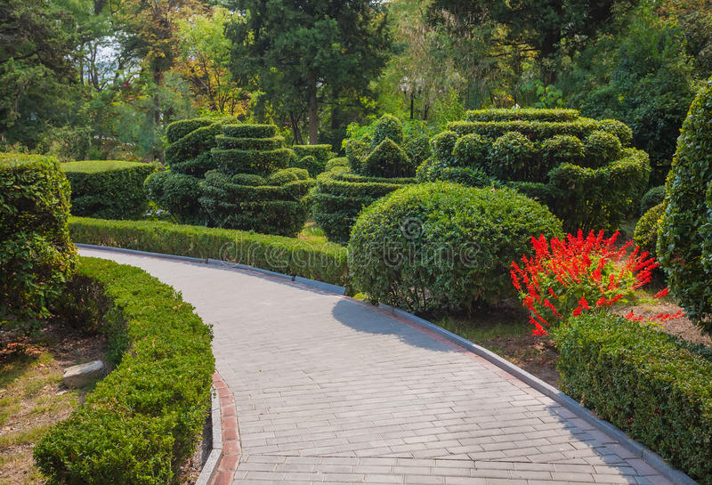 Mooie tuin met hagen royalty-vrije stock foto