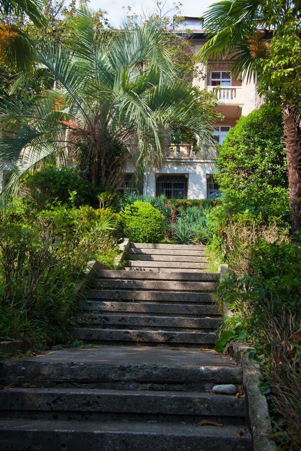 Mooie tuin van kuuroordhotel, Sotchi, Rusland stock foto