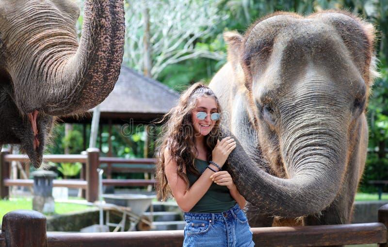 Mooie unieke olifant met meisje bij een reserve van het olifantenbehoud in Bali Indonesië stock foto's