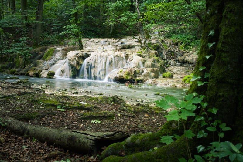 Mooie vage motiewaterval in het donkere bos stock afbeelding