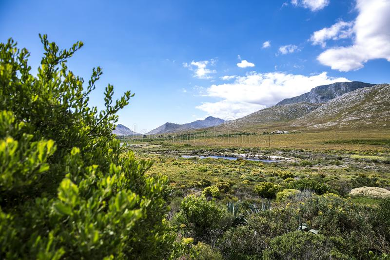 Mooie vallei in Zuid-Afrika stock fotografie