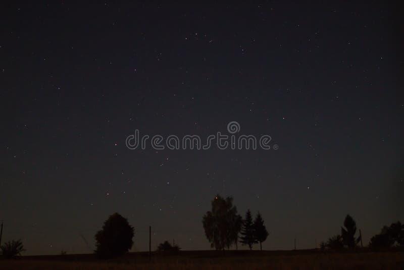 Mooie verbazende nachthemel met sterren en bomen in platteland stock fotografie