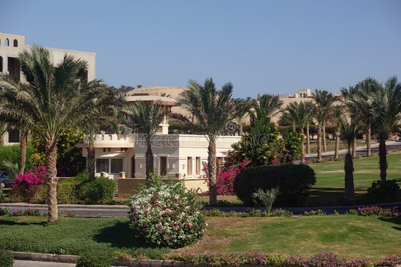 Mooie villa in bloemen en exotische palmen in Egypte royalty-vrije stock afbeelding