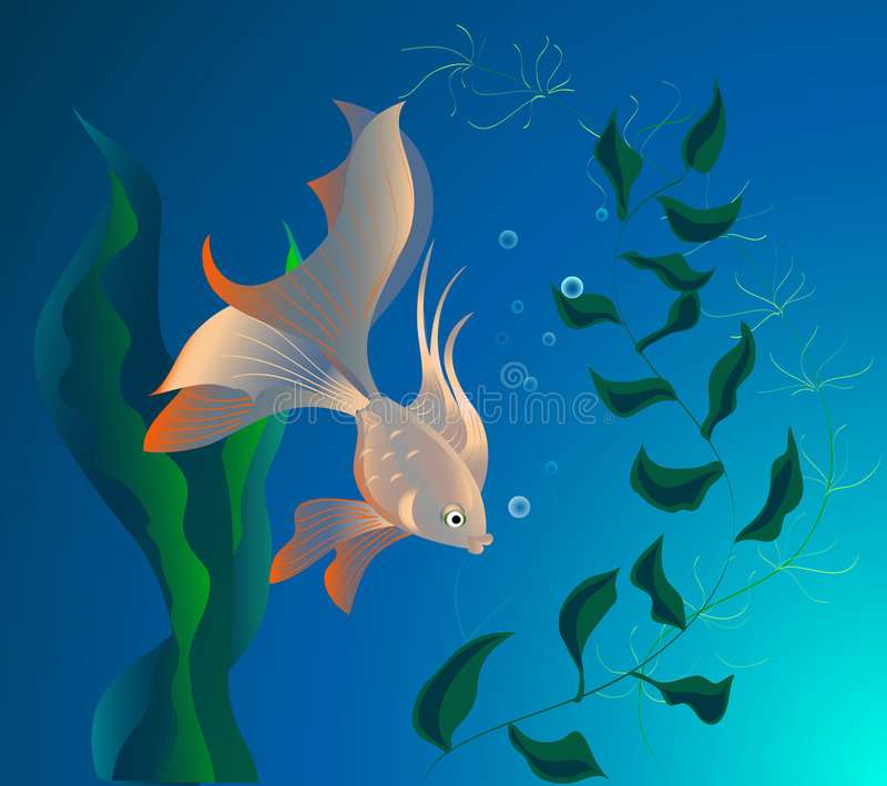 Mooie vissen vector illustratie