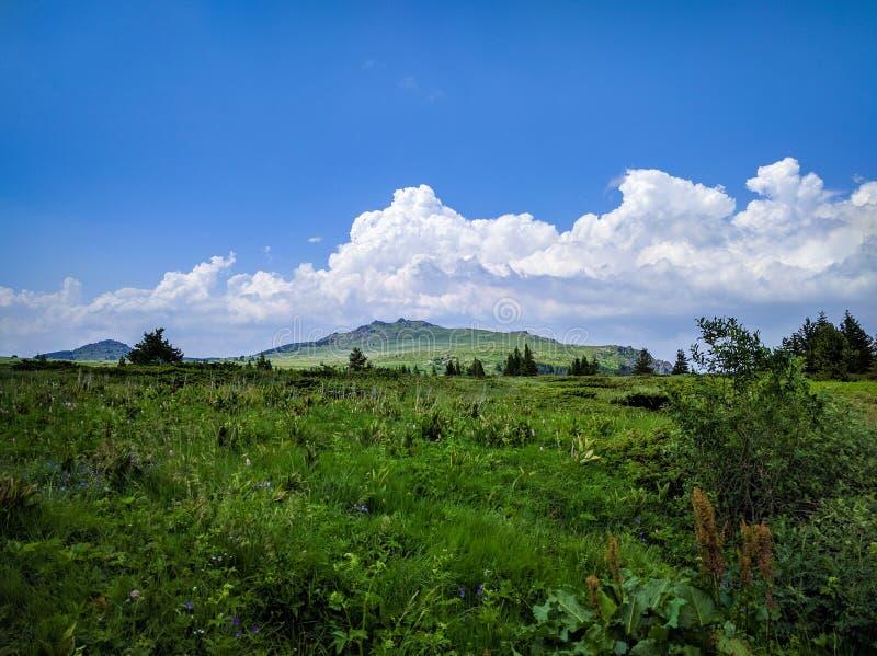 Mooie Vitosha berg, Bulgarije royalty-vrije stock fotografie