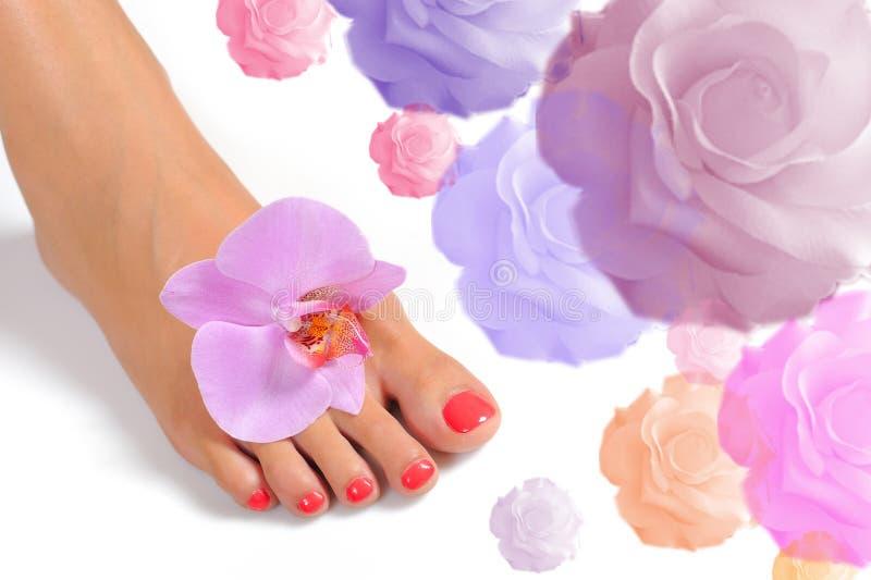 Mooie voeten been met perfecte kuuroordpedicure royalty-vrije stock foto's