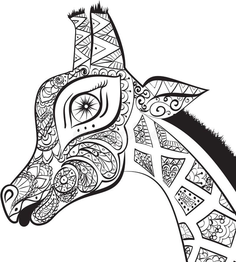 Mooie volwassen Giraf Hand getrokken Illustratie van siergiraf Geïsoleerden giraf op witte achtergrond Het hoofd van een orna royalty-vrije illustratie