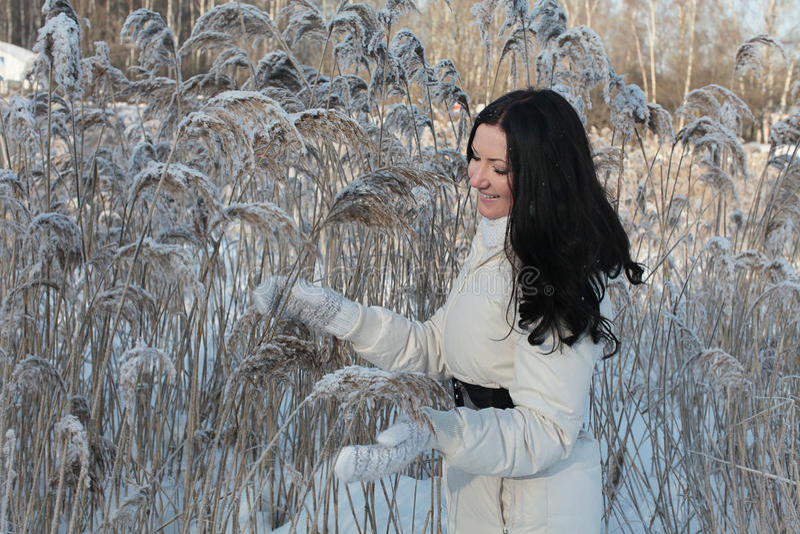 Mooie vrouw in de winterpark royalty-vrije stock afbeelding