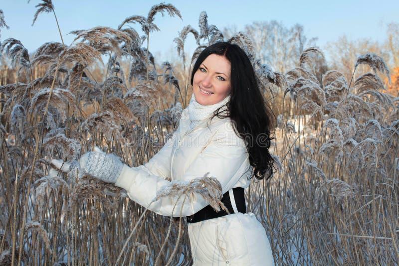 Mooie vrouw in de winterpark royalty-vrije stock afbeeldingen