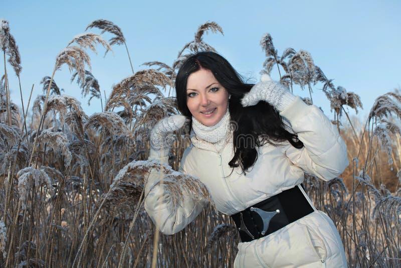 Mooie vrouw in de winterpark stock afbeelding
