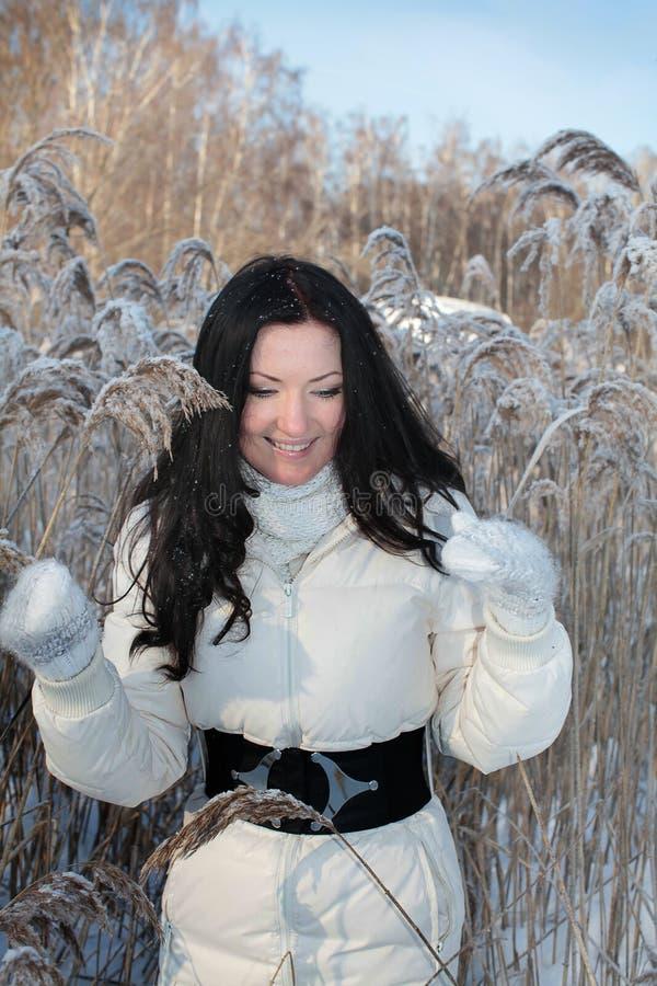 Mooie vrouw in de winterpark stock foto's
